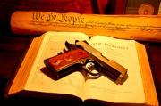 declaration_bible_gun