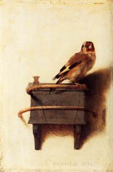 carel_fabritius_-_the_goldfinch_-_wga7721