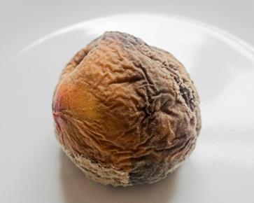 img_1097-peach-v2-680